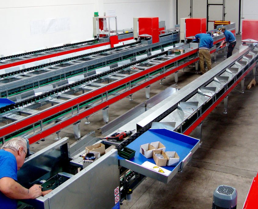 Fruit sorting lines