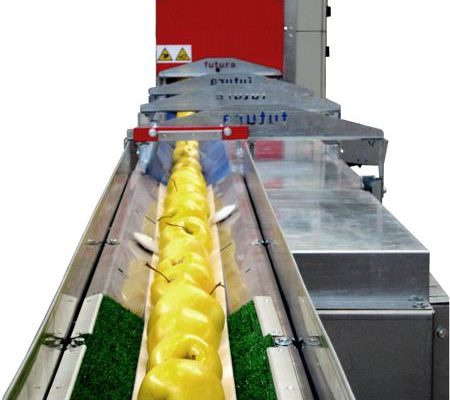 Apple prealignment sorting machine