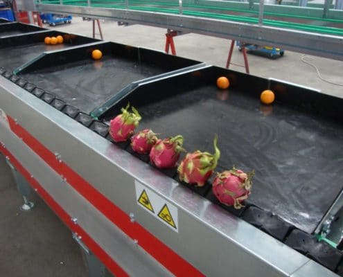 Dragon Fruit grading machine