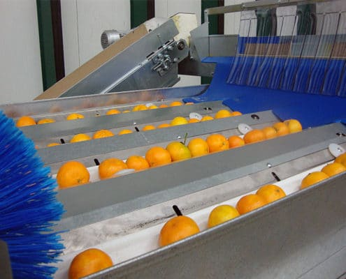 Fruit grading central discharge